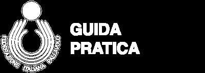 Guida Pratica